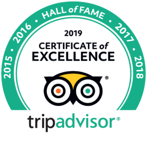 Trip Advisor Travellers Choice 2020 Accent on Taupo